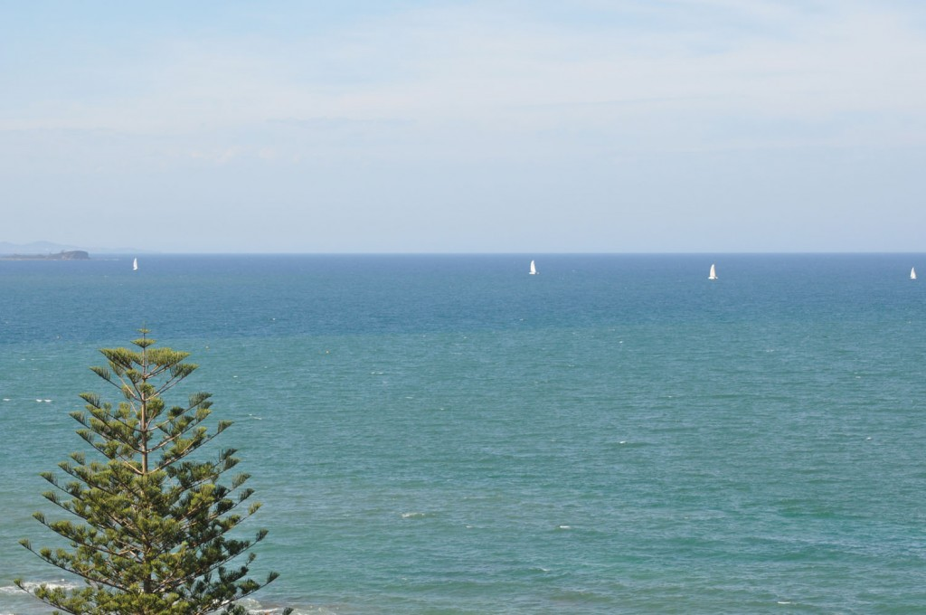 Mooloolaba view of sailboats on the water
