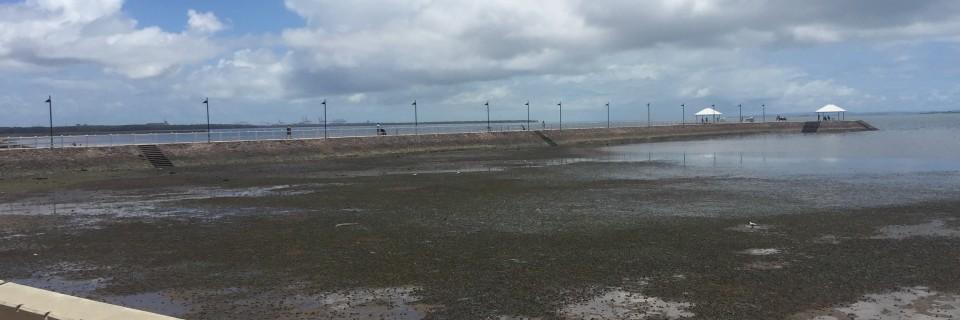 Low tide is always a touch gross!